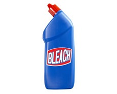 bleach for spiders