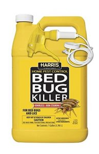 Does alcohol kill bed bugs? – find out if it really works